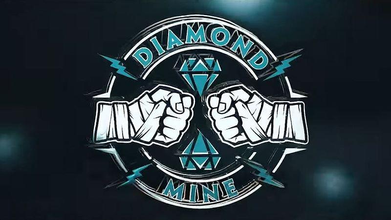 """Diamond Mine"" Vignette Airs During NXT"